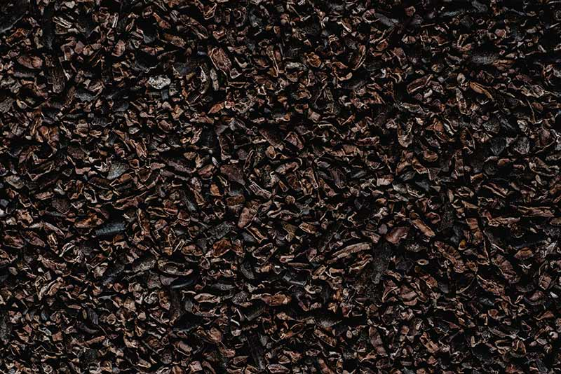 Skin Benefits of Dark Chocolate